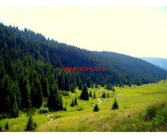 Продавам гора в с. Лилково